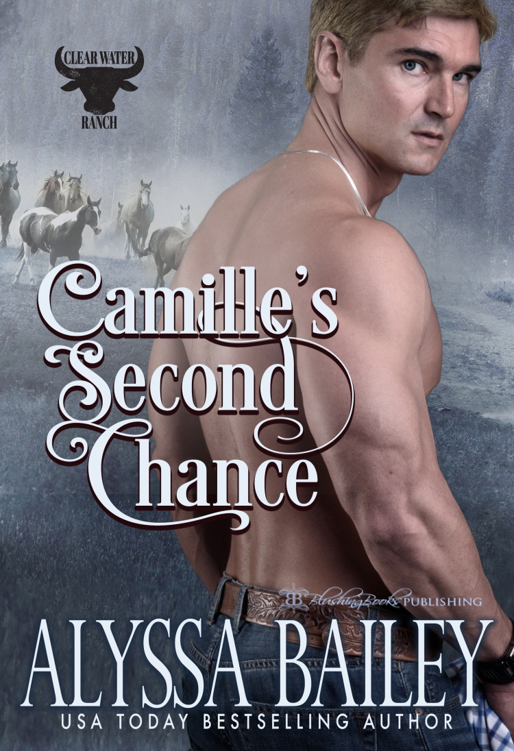 Camille's Second Chance-Alyssa Cover