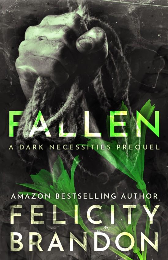 fallen - FB-cover