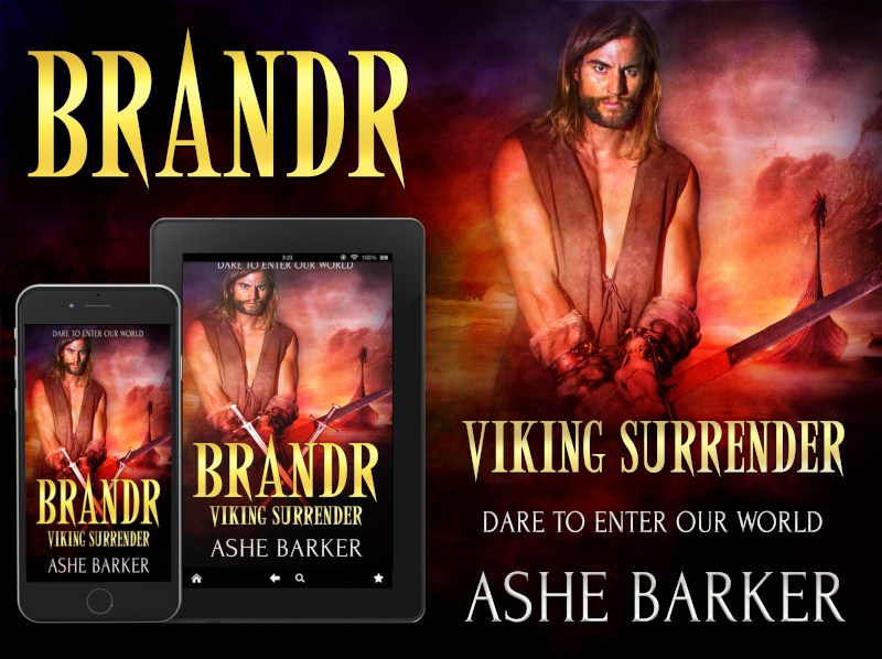 Viking-Surrender-AB-Brandr-poster
